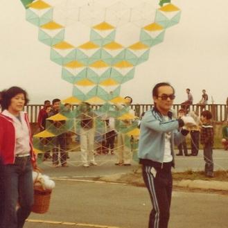Brasil Gigante que Desperta (1980)